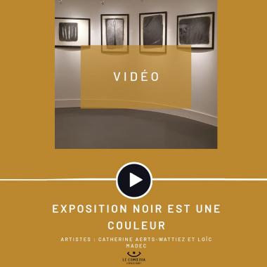 Vidéo : les artistes Catherine Aerts-Wattiez et Loïc Madec au Comoedia Espace d'Art