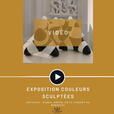 Vidéo : les artistes Miguel Chevalier et Vincent De Monpezat au Comoedia Espace d'Art