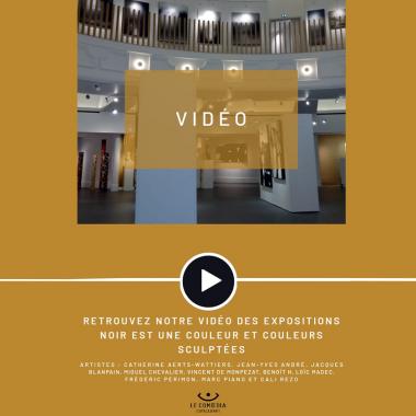Vidéo : les expositions Noir est une couleur et Couleurs sculptées à l'Espace d'Art Le Comoedia