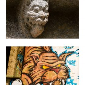 Photographie felin de JPH exposition street art galerie art le Comoedia sculpture et graffiti