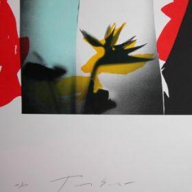 Lithographie Tony Soulié ombre fleur jaune bleu et rouge