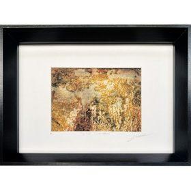 Gravure - Thomas Godin - encadrée - doré, rosé, blanc